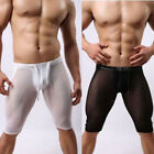Fitness Men's Sheer Underpants Mesh Tights Sports Short Pants Underwear Shorts