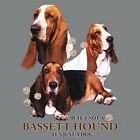 Not Basset Hound Just Dog Size Youth Small-6 X Large T Shirt Pick  Size image