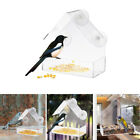 Acrylic Transparent Bird Squirrel Feeder Tray Birdhouse with Suction Cup Tools Z