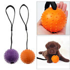 Natural Rubber Ball on a Rope Indestructible Chewing Ball for Dog Teeth Cleaning