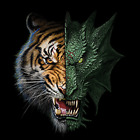 Half Dragon Tiger Pick Size Youth Small-6 X Large T Shirt Pick  Size image