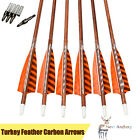 """Carbon Arrow 30"""" Turkey Feather 0.244"""" Spine 400 Wood Archery Outdoor Hunting"""
