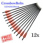 Archery Safety Crossbow Bolt Fiberglass Arrow  -  with Replaceable Arrow Tips 4""