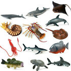 Shark Model Marine Life Figure Educate Ocean Animal PVC Toy for Child Kids Decor
