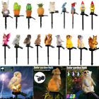 LED Owl Solar Powered Garden Light Outdoor Ornament Lawn Waterproof Novelty Lamp