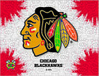 Chicago Blackhawks HBS Gray Red Hockey Wall Canvas Art Picture Print $56.00 USD on eBay