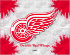 Detroit Red Wings HBS Gray Red Hockey Wall Canvas Art Picture Print $73.00 USD on eBay