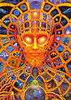 Alex Grey Poster - Cosmic Chris - Psychedelic Wall Art - Various Sizes #Charity