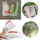 10-100pcs Nylon Net Bag Fruit Vegetable Cover Anti Insect Garden Pest Control