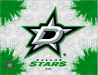 Dallas Stars HBS Gray Green Hockey Wall Canvas Art Picture Print $56.0 USD on eBay