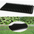 10/20Pcs Germination Tray Sprout Plate 200 Holes Cells Nursery Pots Tray