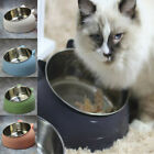 Tilted Feeder Stainless No Slip  Cat Bowl Raised 400ml Stand Steel Elevated