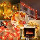 Fairy LED String Light String Light Autumn Lamp Garland Curtains Quality