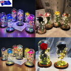 Led Light Enchanted Rose In Glass Dome Valentine's Day Gift Home Decoration