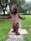 Castor Mascot Costume Suit Cosplay Party Game Dress Outfit Advertising Christmas