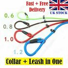 Strong Slip On Pet Dog Puppy Lead Leash Nylon Rope Training Light Weight Durable