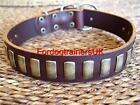 Attractive Brown Leather Dog Collar with Brass Plates
