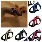 XS/S Trixie Padded Soft Dog Harness Nylon Yorkie Russell