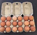 Egg Box Cartons For Poultry New Recyclable Fibre In 1/2 Dozens Suit All Sizes