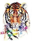 TIGER HEAD DECAL GRAPHIC STICKER VARIOUS SIZES