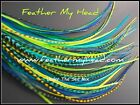 Whing Farms Long Feather Hair Extensions With Or Without Tools And Beads