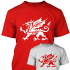 WELSH DRAGON - Mens T SHIRT - Wales Gift Present Idea - S M L XL XXL XXXL