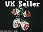 SUMMER RED STRAWBERRY FRUIT 4 PIECE ENAMEL KEYRING HANDBAG CHARM GIFT UK SELLER