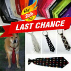 Cute Pet Dog Elastic Band Business Formal Tie Colored Wedding Party Necktie New