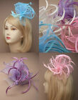 Looped Mesh Feather Clip Brooch Fascinator Weddings Ladies Day Royal Ascot Women