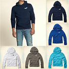 HOLLISTER MEN`S HOODIES NWT BIG DUME S,M,L,XL NEW ARRIVAL! Navy,Grey,Blue,White