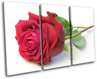 Roses Flower Love Floral TREBLE CANVAS WALL ART Picture Print VA