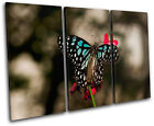 Butterfly Flowers Animals TREBLE CANVAS WALL ART Picture Print VA