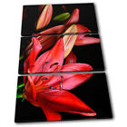 Red Lilies Flowers Floral TREBLE CANVAS WALL ART Picture Print VA