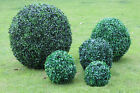 Fashion Artificial Plant Ball Tree Boxwood Wedding Event Home Outdoor Decoration