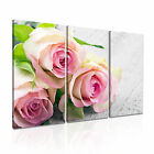 FLOWER Rose 4 Canvas 3A Framed Printed Wall Art ~ 3 Panels