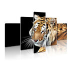 ANIMAL Tiger 30 Canvas 5 Framed Printed Wall Art ~ 5 Panels