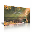 Forest River Sun Bench Canvas Nature Modern Home Office Wall Art Deco