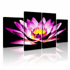 FLOWER Lily Canvas Framed Printed Wall Art 11 ~ 4 Panels