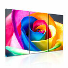 Colorful Rainbow Rose Flower Canvas Modern Art ~ 3pc