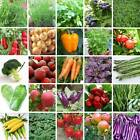 Survival Heirloom Vegetable & Fruits Seeds garden NON GMO / Hybrid Organic Plant