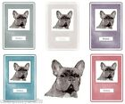 French Bulldog  Notebook by Curiosity Crafts NEW* Choice of Colours
