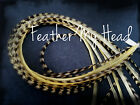 Feather Hair Extensions Single Color Soft And Warm Tones