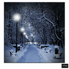 Snow Scene park   Landscapes BOX FRAMED CANVAS ART Picture HDR 280gsm