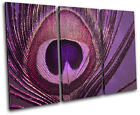 Peacock    PURPLE PINK Abstract TREBLE CANVAS WALL ART Picture Print VA