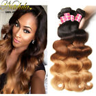 7A Brazilian Virgin Hair 1/3Bundles Ombre 3 Tone Body Wave Human Hair Extensions