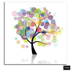 Colourful Nature Trees  Abstract BOX FRAMED CANVAS ART Picture HDR 280gsm