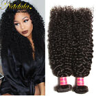 3bundles 300g Malaysian Curly Hair 100% Unprocessed Virgin Human Hair Extensions