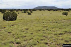 22.80 ACRES ARIZONA RANCH LAND - BORDERS STATE LAND NORTHEAST of VERNON