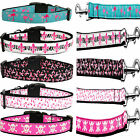 Adjustable Durable Ribbon Nylon Dog Collar And Leash set13