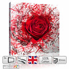 RED ROSE FLOWER ABSTRACT ROMANTIC FLORAL - CANVAS WALL ART PRINT PICTURE DECOR